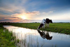 Kurzurlaub Ostfriesland im Miniformat