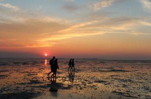 Wattwanderung bei Sonnenuntergang